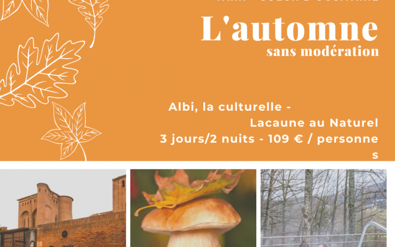 séjour Albi Lacaune